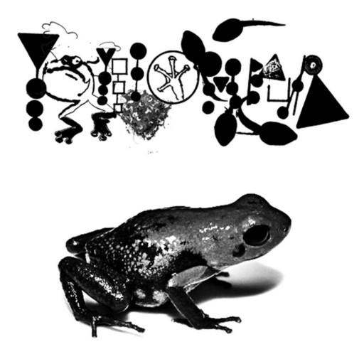 Phyllomedusa - Slime Immersion 2007