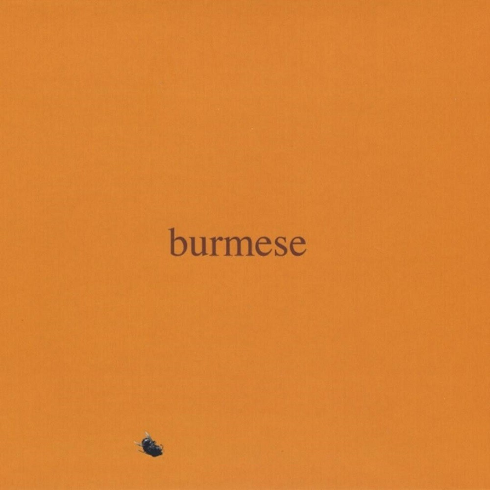 Burmese - Colony Collapse Disorder (2009) Cover