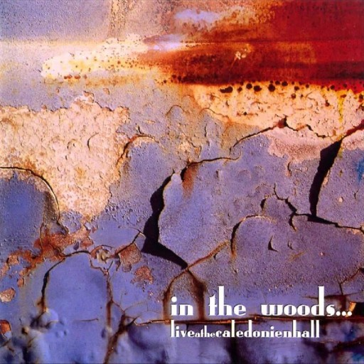 In the Woods... - LiveAtTheCaledonienHall 2003