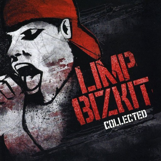 Limp Bizkit - The Collected 2008