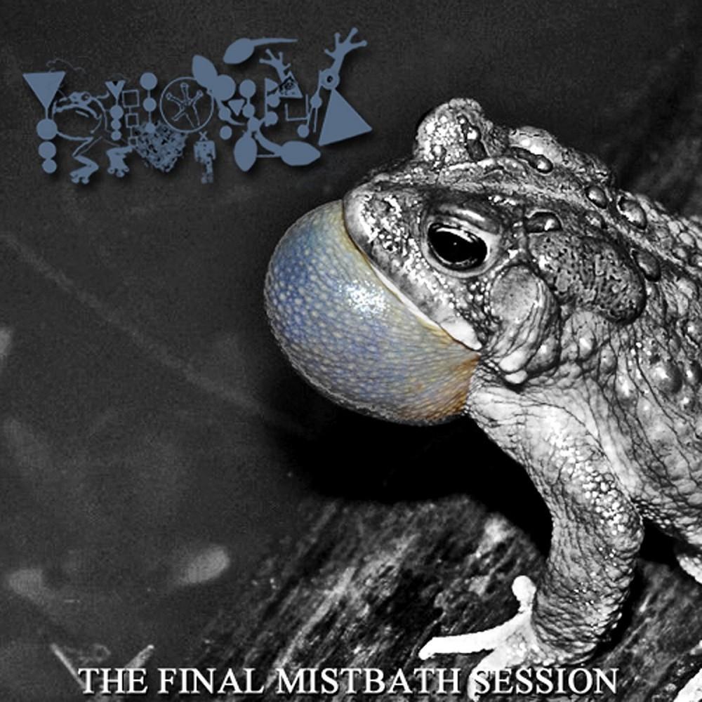Phyllomedusa - The Final Mistbath Session (2009) Cover