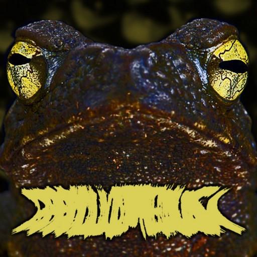 Phyllomedusa - Eyes That See in the Dark 2018