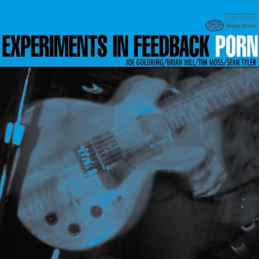 Porn - Experiments in Feedback 2001