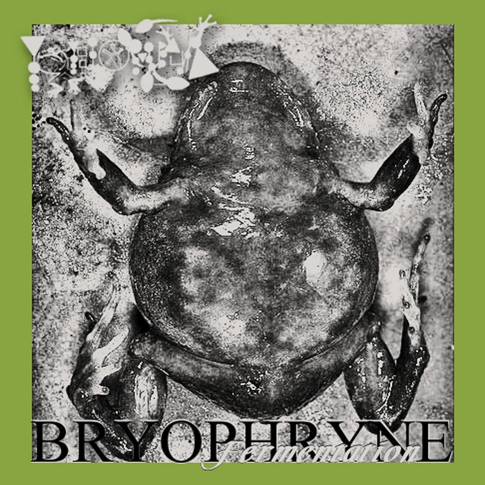 Phyllomedusa - Bryophryne Fermentation (2010) Cover