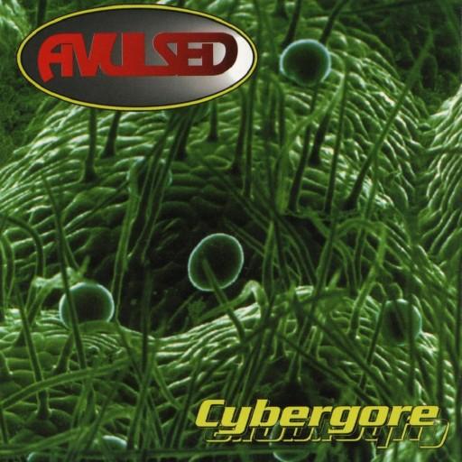 Avulsed - Cybergore 1998