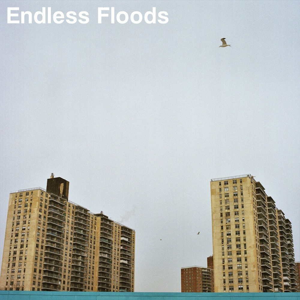 Endless Floods - II (2017) Cover