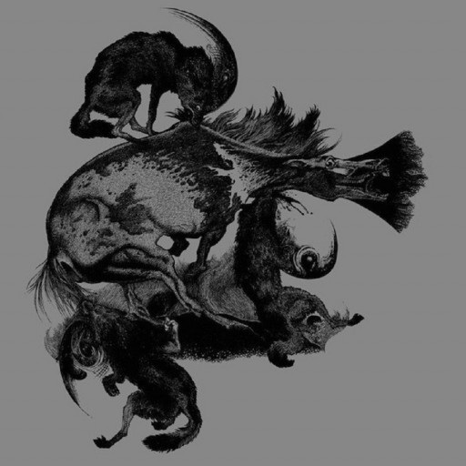Horseback - The Invisible Mountain 2009