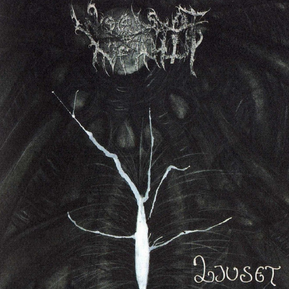 Woods of Infinity - Ljuset
