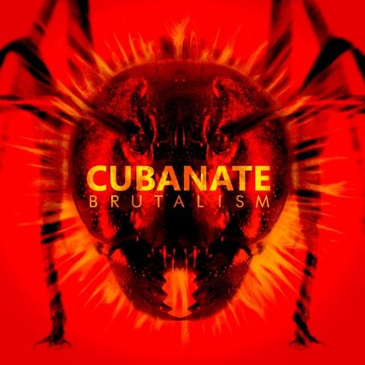 Cubanate - Brutalism 2017